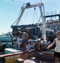 Fischer im Hafen von Sète, 1993