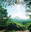 Die Montagne St. Victoire vom Chateau Noir aus gesehen, 1993