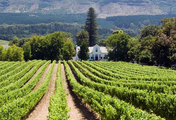Stellenbosch, copyright: istockphoto.com
