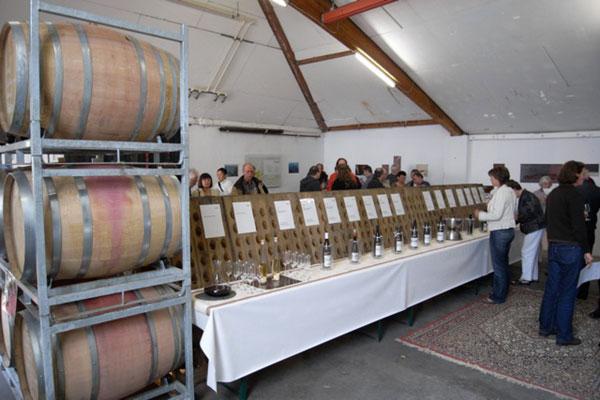 Jahrgangsverkostung bei Weingarts