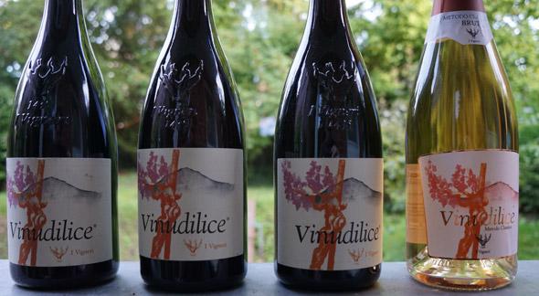 vinudilice_vier