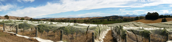 Marlborough_Southern_Valley_02