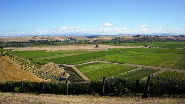 Blick über die Gimblett Gravels, einer der bekanntesten Appellationen Neuseelands, Copyright: C. Raffelt