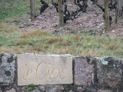 Beaujolais 2014 016