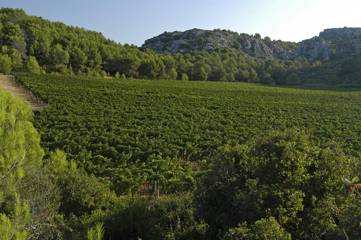 Peter Wildbolz, Christa Derungs, Mas du Soleilla, La Clape, Narbonne Plage, Languedoc-Roussillon
